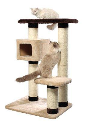 kratzbaum f r kletterfaule katze gesucht. Black Bedroom Furniture Sets. Home Design Ideas