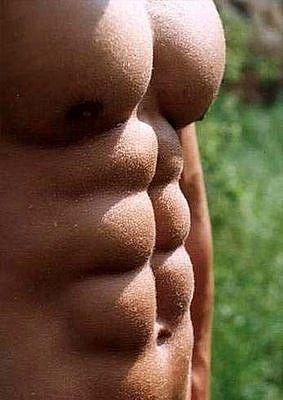 muskelaufbau wieviel fett