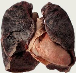 Die sehr starke Verschwörung Rauchen aufzugeben