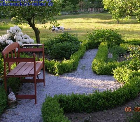 mein eingepflanzter buchs wird braun garten pflanzenpflege. Black Bedroom Furniture Sets. Home Design Ideas