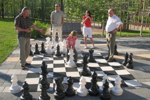 wie geht schach