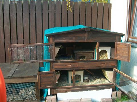 meerschweinchen im winter haltung kaelte. Black Bedroom Furniture Sets. Home Design Ideas