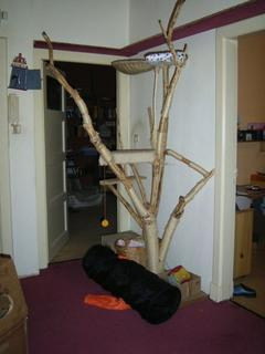 kratzbaum zum selber bauen tiere katze katzen. Black Bedroom Furniture Sets. Home Design Ideas