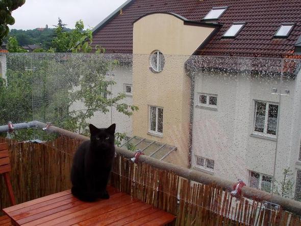 balkon windschutz plexiglas balkon windschutz seitlich. Black Bedroom Furniture Sets. Home Design Ideas