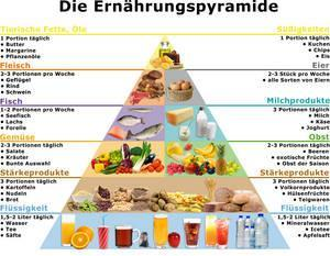 ernährungsplan gewichtszunahme