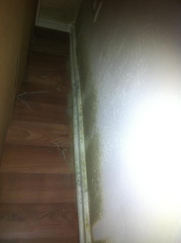 schimmel in neubauwohnung wohnen schadenersatz schaden. Black Bedroom Furniture Sets. Home Design Ideas