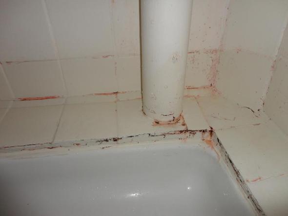 Ist das schimmel oder rost dusche hilfe duschen - Schwarzer schimmel am fenster ...