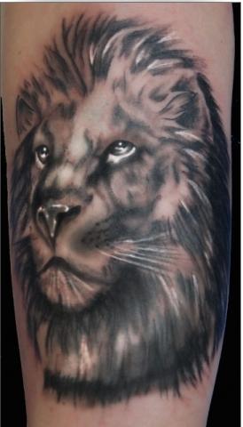l wen und tigerkopf tattoos gesucht motive tattos tiger. Black Bedroom Furniture Sets. Home Design Ideas