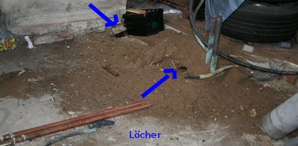 ratten los werden sandhaufen von ratten dachziegelschutz gegen ratten tiere freizeit. Black Bedroom Furniture Sets. Home Design Ideas