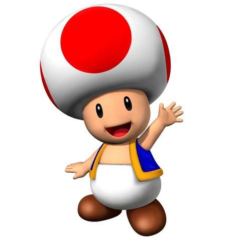 Toad Kostüm zum selber machen (Super Mario, Freizeit)