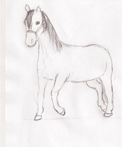 was sagt ihr zu diesen zeichnungen bilder pferde reiten. Black Bedroom Furniture Sets. Home Design Ideas