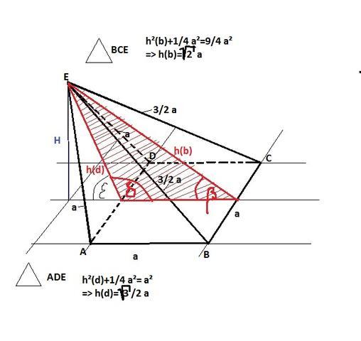 Bild 1 - (Mathematik, Gehirn)