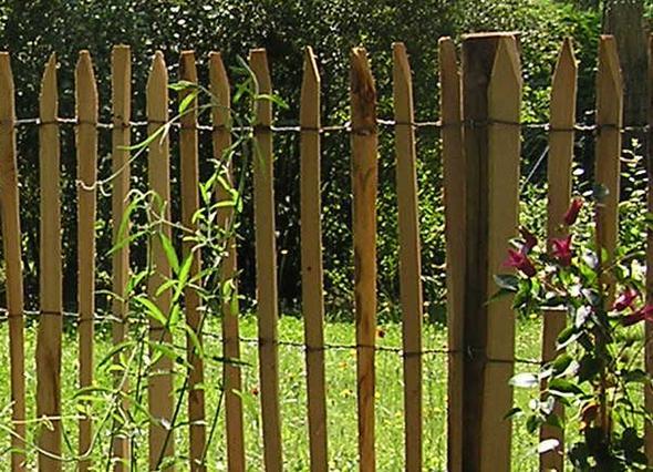 wer kann mir einen tipp zum thema einfriedung zaun hundeschule geben hund landwirtschaft zaun. Black Bedroom Furniture Sets. Home Design Ideas