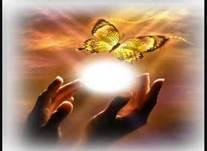 Die Seele aller Lebewesen schwebt zum Licht :-) - (Tiere, Katzen, Tod)