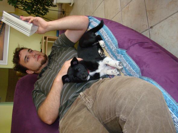 hund mit mensch - (Hund)