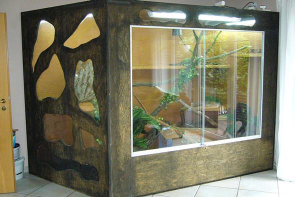 ist die haltung von leguanen wirklich so aufwendig und schwierig tiere natur aquarium. Black Bedroom Furniture Sets. Home Design Ideas