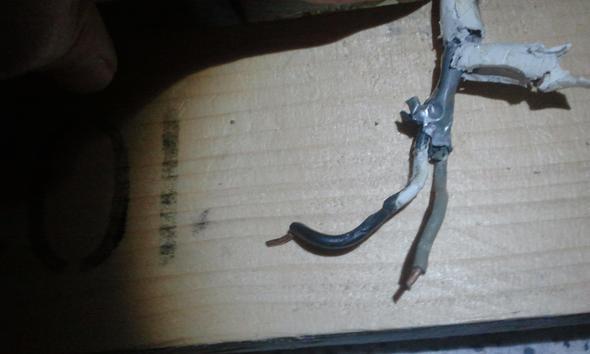 2 draht stromkabel anschlie en an steckdose mit 3 kabel haus strom elektrik. Black Bedroom Furniture Sets. Home Design Ideas