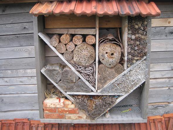 Insektenhotell - (Tiere, Garten, Natur)