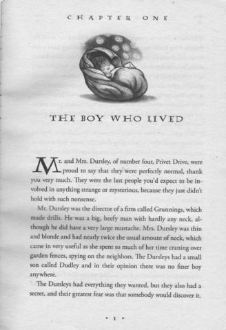 1.Seite HP - (Buch, Englisch, lesen)