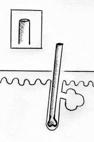 wachsen die nasenhaare dann dicker und schneller nach haare nase. Black Bedroom Furniture Sets. Home Design Ideas