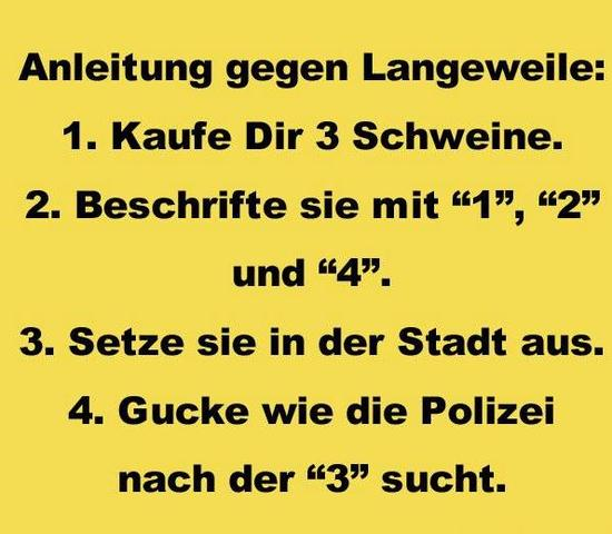 Anleitung - (Langeweile)