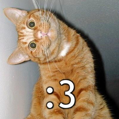 Katze - (Bedeutung, smilies)