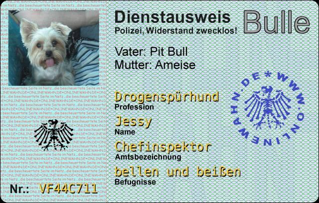 Dienstausweis Polizei Nrw