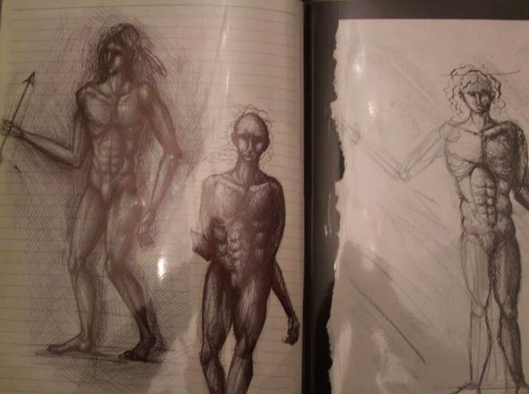 Ein bisschen Anatomie +Prozess  - (Studium, Kunst, zeichnen)