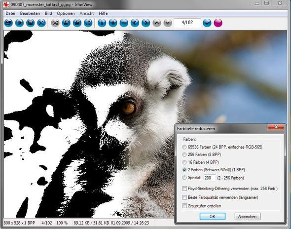 Farbe zu Binärbild mit Bildbetrachter IrfanView - (Android, App, Photoshop)
