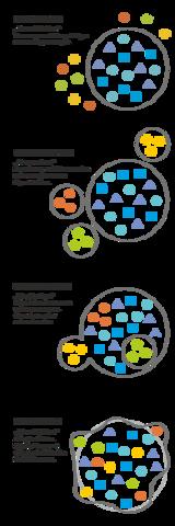 Schaubild - (Erklärung, Integration, Inklusion)