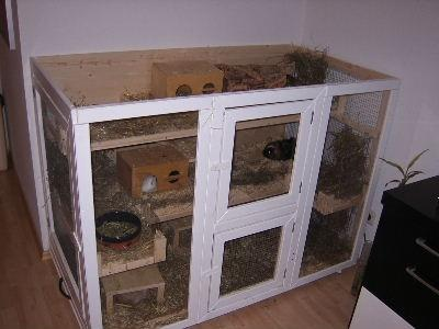 wie gross sollte ein artgerechter k fig f r zwei. Black Bedroom Furniture Sets. Home Design Ideas