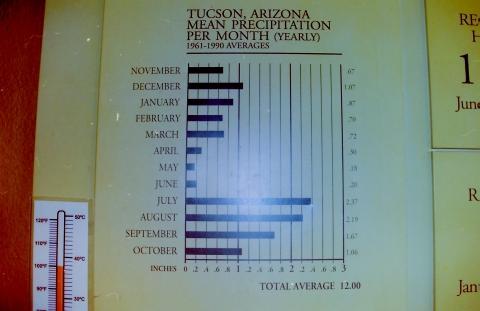 Niederschlag in Tucson, AZ / im Monatsdurschnitt - (USA, Stadt, sonnig)