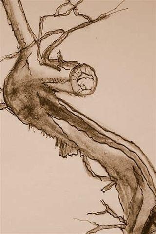 - (zeichnen, Malerei)