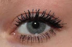 Das sind Spinnenbeine - (Beauty, Augen, Wimpern)