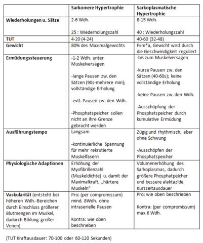 Hypertrophietraining - (Sport, Training, Muskelaufbau)