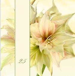 Sommerblumen - (Einladung, Silberhochzeit, Selbst entwerfen)
