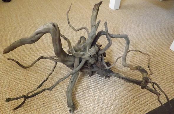 Wurzel - (Aquarium, Holz, Aquaristik)