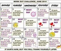 plan23 - (Fitness, Muskelaufbau, Anfänger)