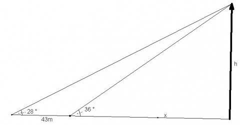 - (Mathe, Winkelfunktionen)