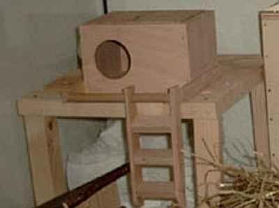 hamster einrichtung selber bauen klettern. Black Bedroom Furniture Sets. Home Design Ideas