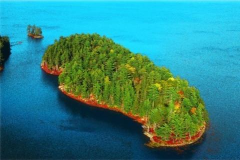 Mehr Wald geht nicht - (kaufen, Insel)