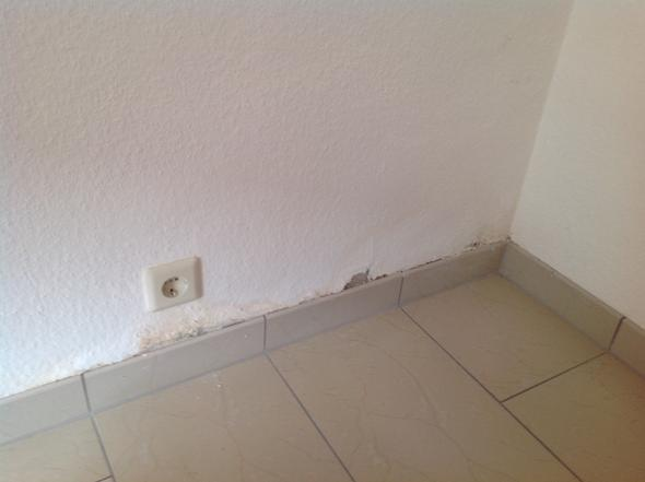Gelbliche tapete loest sich schimmel feuchtigkeit - Wand feucht was tun ...