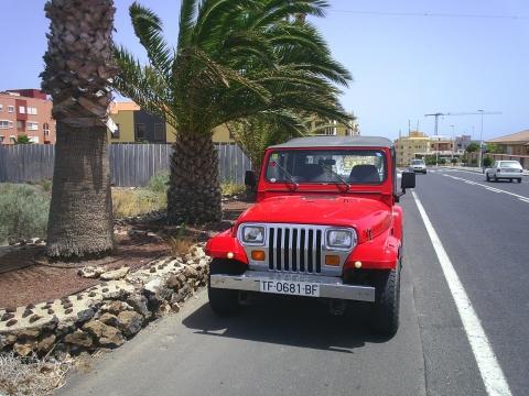 US-Jeep Wrangler - (Recht, Auto, Führerschein)