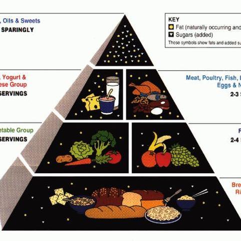 Gibt auch noch andere aber die(Wikipedia) trifft es ganz gut  - (Gesundheit, Ernährung, abnehmen)