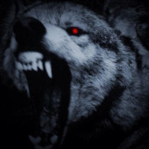 Wolfsglück! - (Liebe, Freunde, Menschen)