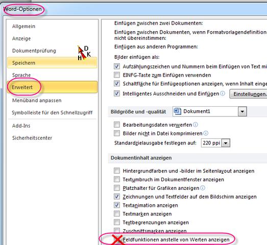 Feldfunktionen bei Word 2010 ein- ausschalten - (Internet, Microsoft, Website)