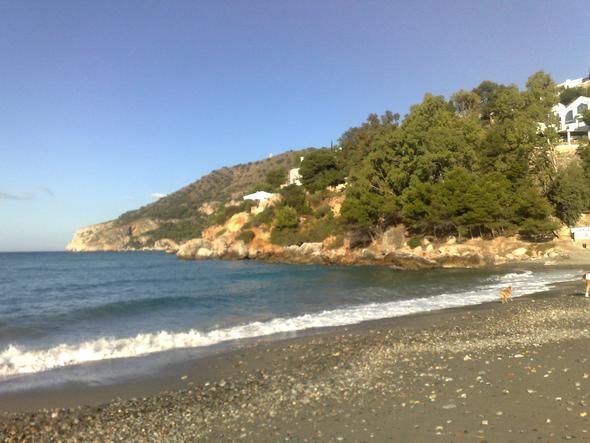 Hund am Strand von La Herradura - (Hund, Urlaub, Spanien)