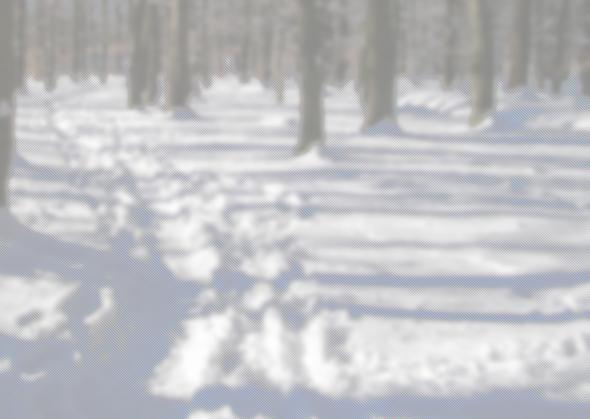 Gimp: Video-Effekt - (Homepage, Bildbearbeitung)