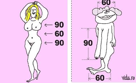 Grafik - (Model, bodymasse)