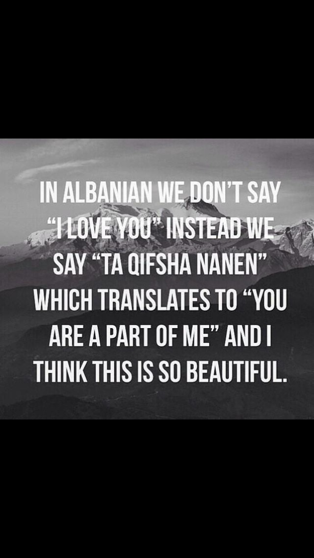 albanische sprche | anke.digimerge